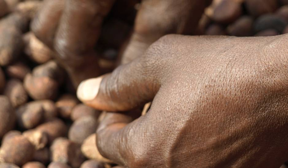LOREAL Burkina Faso Solidarity sourced shea butter